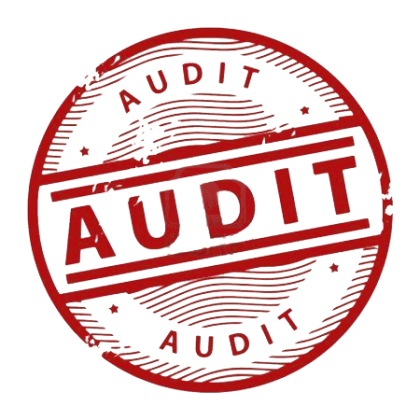 Medical Coding Audit